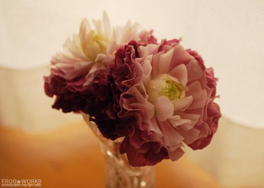 16.01.14flower.jpg