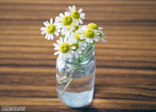 16.04.18flower.jpg
