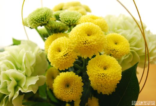 17.01.05flower1.jpg